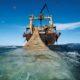 Российские рыбаки увеличили объем вылова водных биоресурсов за 9 месяцев на 5,6 % — до 4 млн. тонн