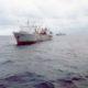 Минсельхоз предложил упростить получение разрешения на вылов рыбы