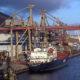 Рост вылова рыбы в Дальневосточном бассейне повлиял на загрузку портовых мощностей