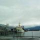 Россия, Канада, США, Япония и Корея начали уникальные морские исследования тихоокеанских лососей